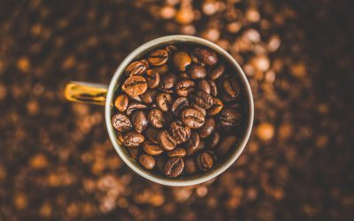Early Humans ATE Their Coffee – Here's How